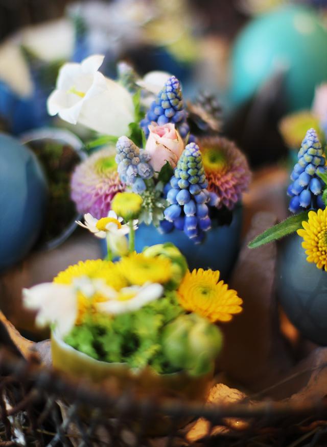 Blütenwerke, Blumenladen Kiel, Küstenmerle