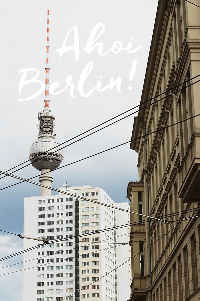 berlin, berliner fernsehturm, küstenmerle